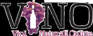 ViNO logo